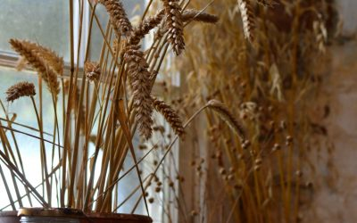 Herne Village Windmill